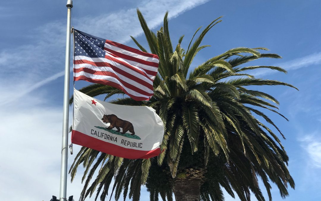 California Flag & USA Flag in front of palm tree